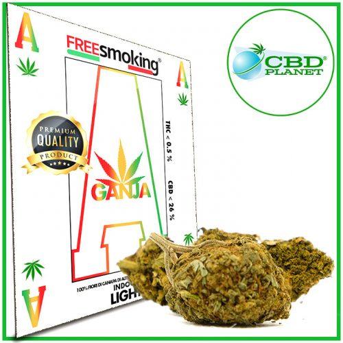 Asso Cannabis