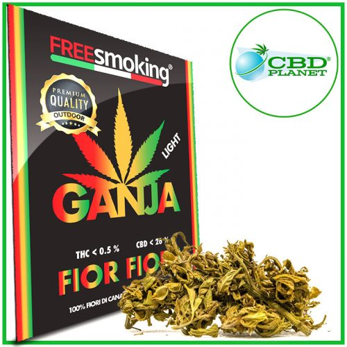 Fior Fiore Cannabis