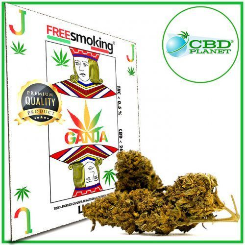 Jack Cannabis